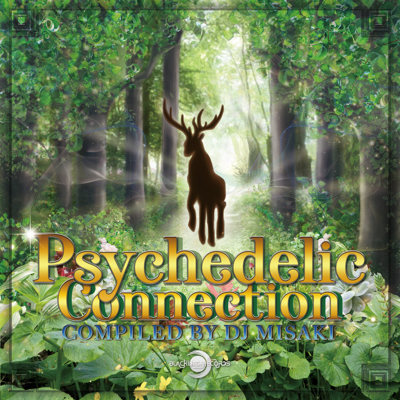 Psychedelic Connection (Compiled by Misaki) - AAVV